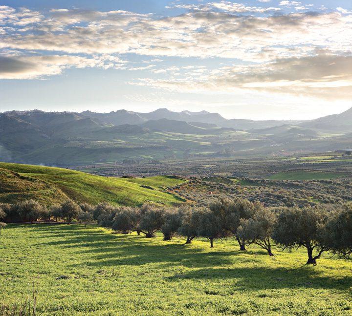 Sicilia digerida