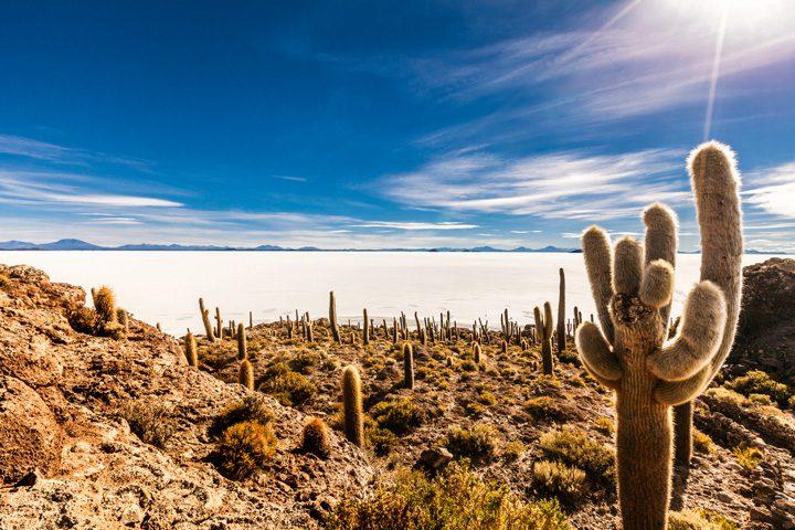 Cocina de altura: La Paz