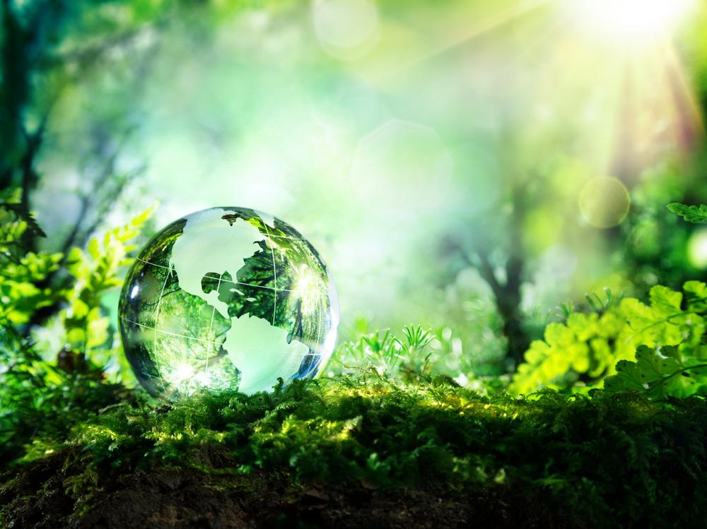 Conviértete en todo un maestro del medio ambiente