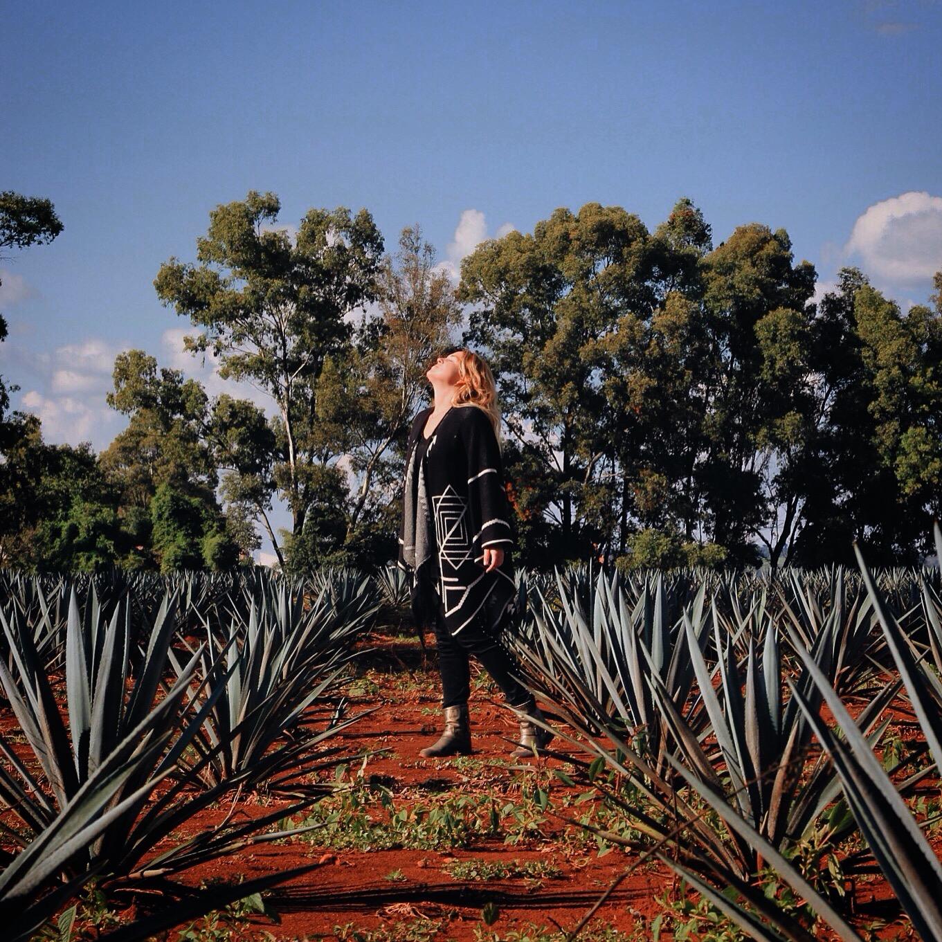 Tequila para la tribu