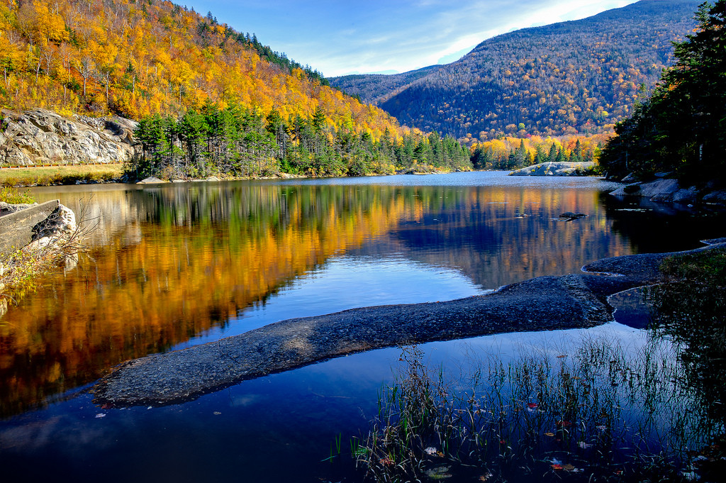 Beaver Pond, White Mountains, New Hampshire