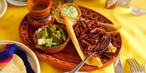 Comidas exóticas mexicanas