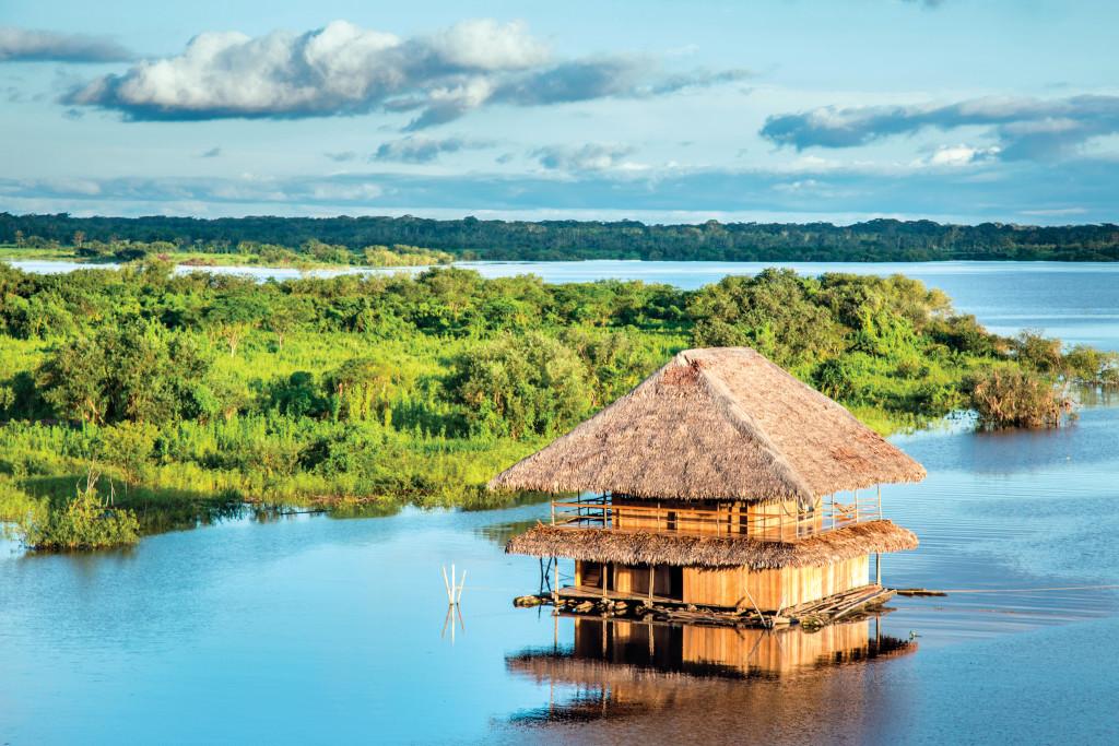 Amazonia peruana