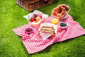 Tips para organizar un picnic