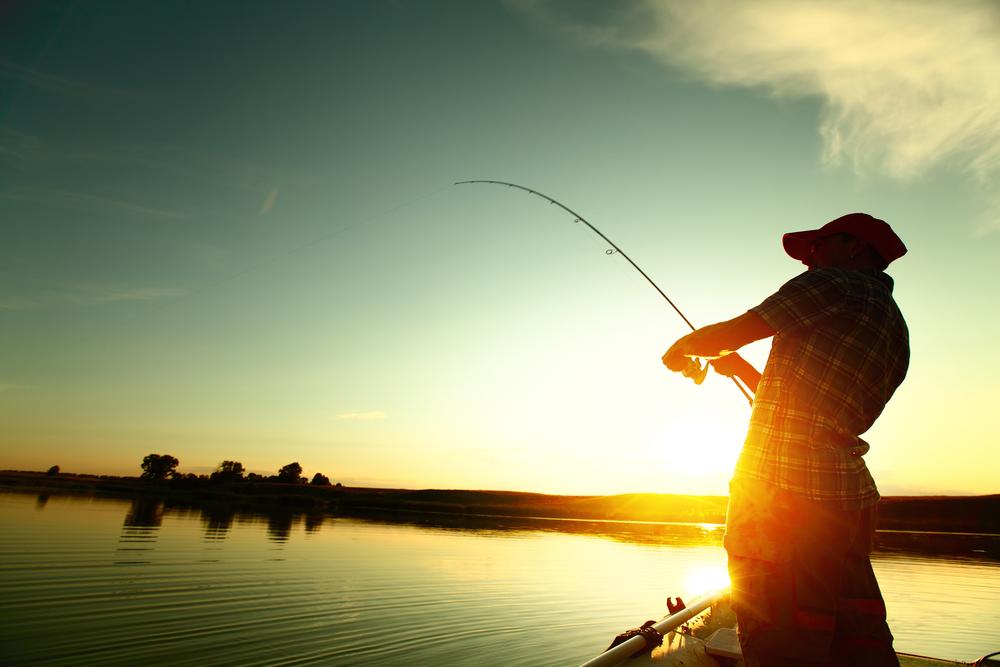 Top para pesca deportiva en México