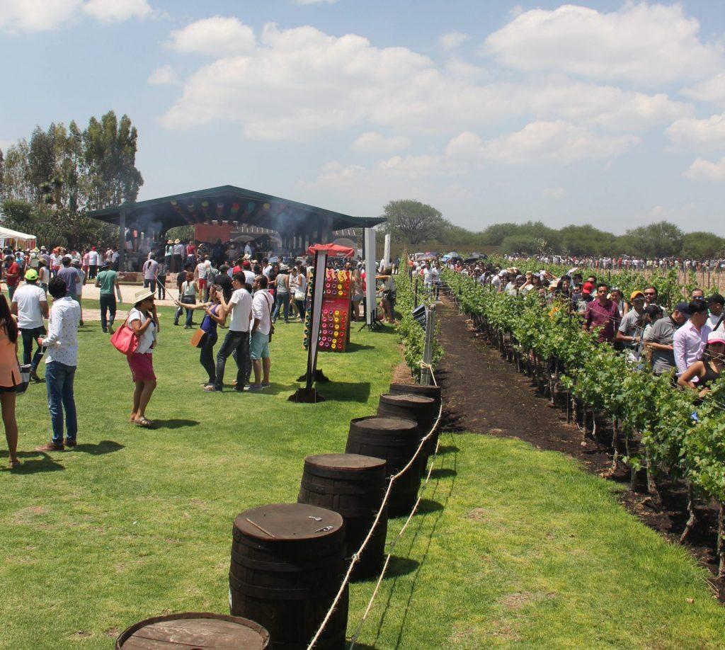 Wine Colors & Music Fest, el maridaje perfecto