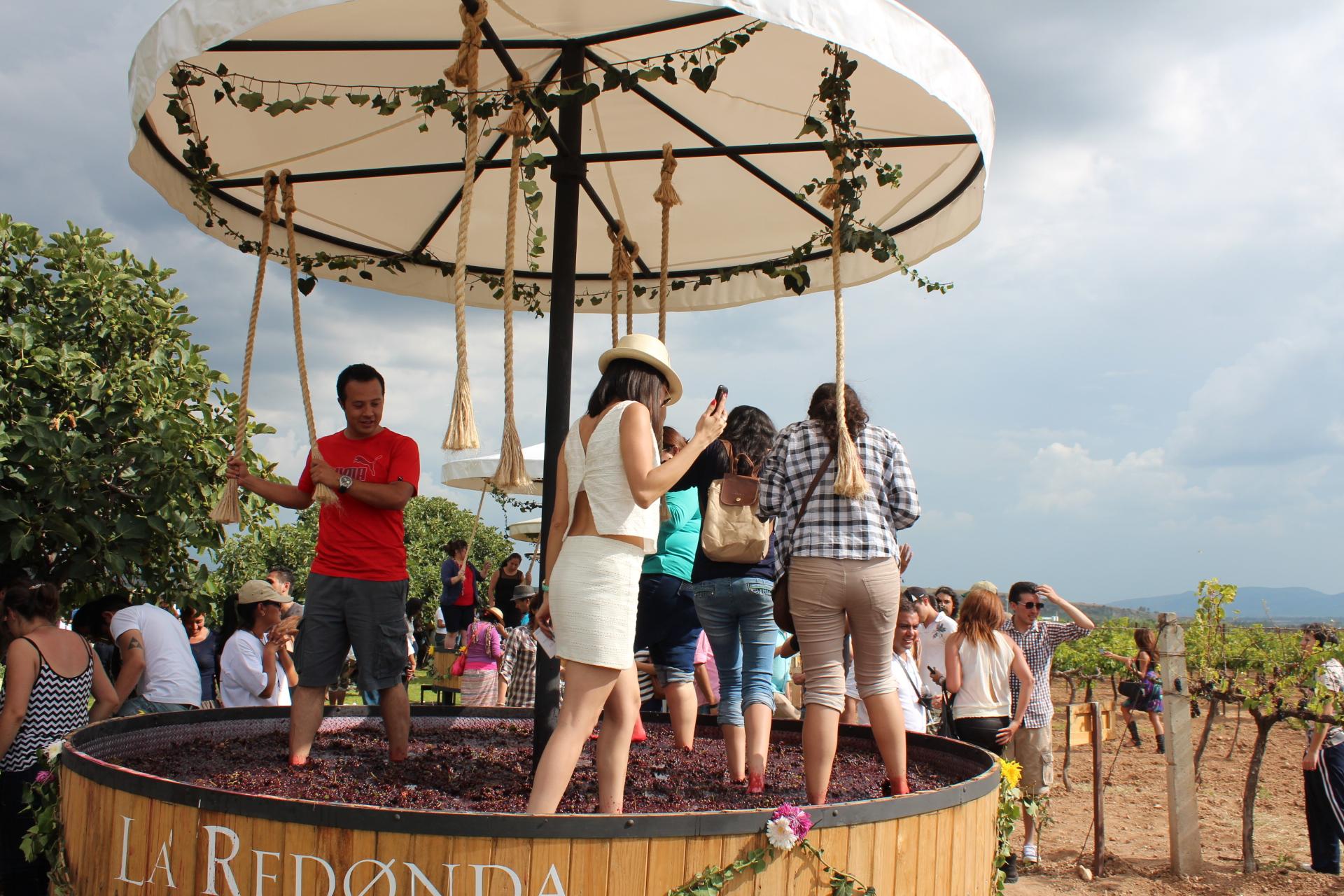 Fiestas de la Vendimia en La Redonda