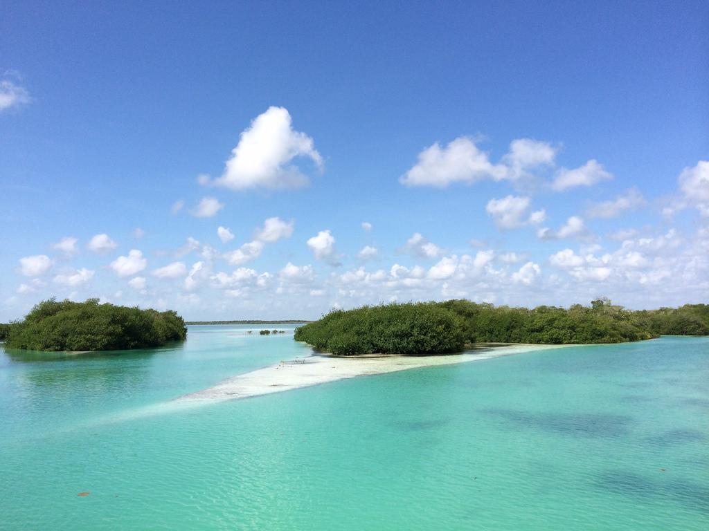 Paraísos naturales de México que son Patrimonio de la Humanidad