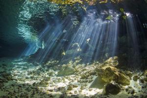 Yucatán fomenta el turismo con realidad virtual