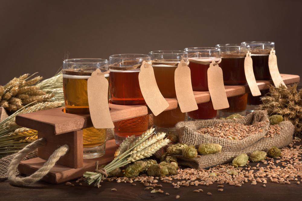 Cerveza, un experimento de sabor