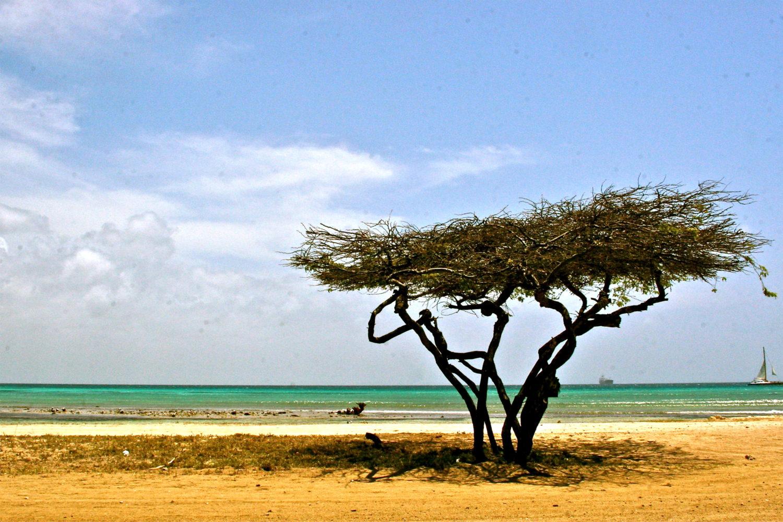 Aruba, una isla donde la felicidad se toma en serio