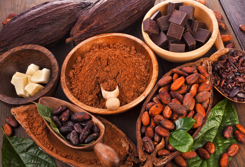 Festival del Chocolate Tabasco, un edén para compartir