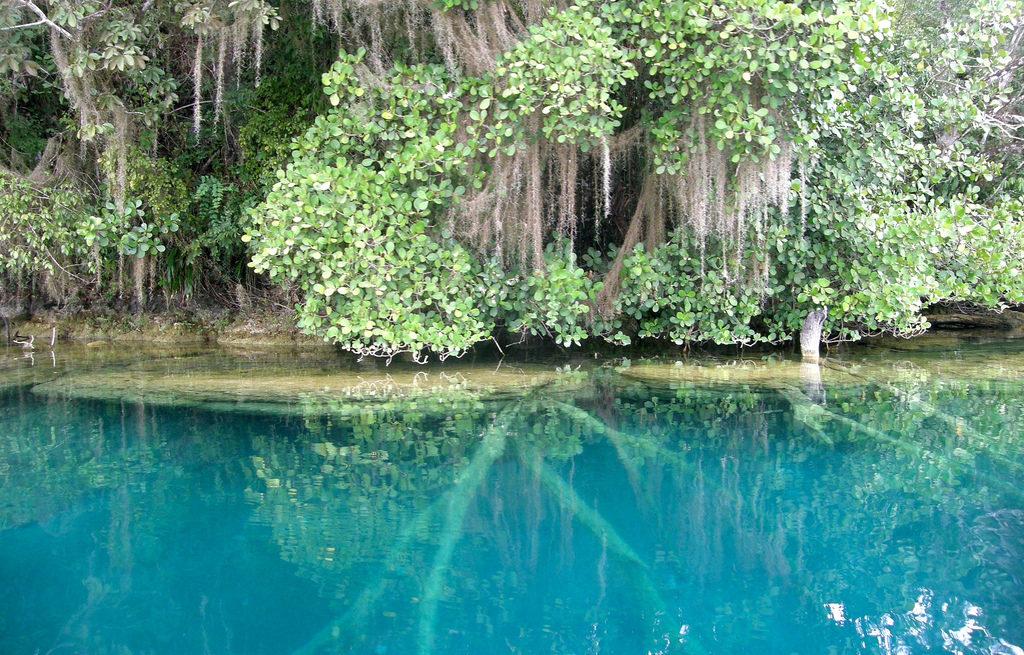 Lagos y lagunas hermosas de México