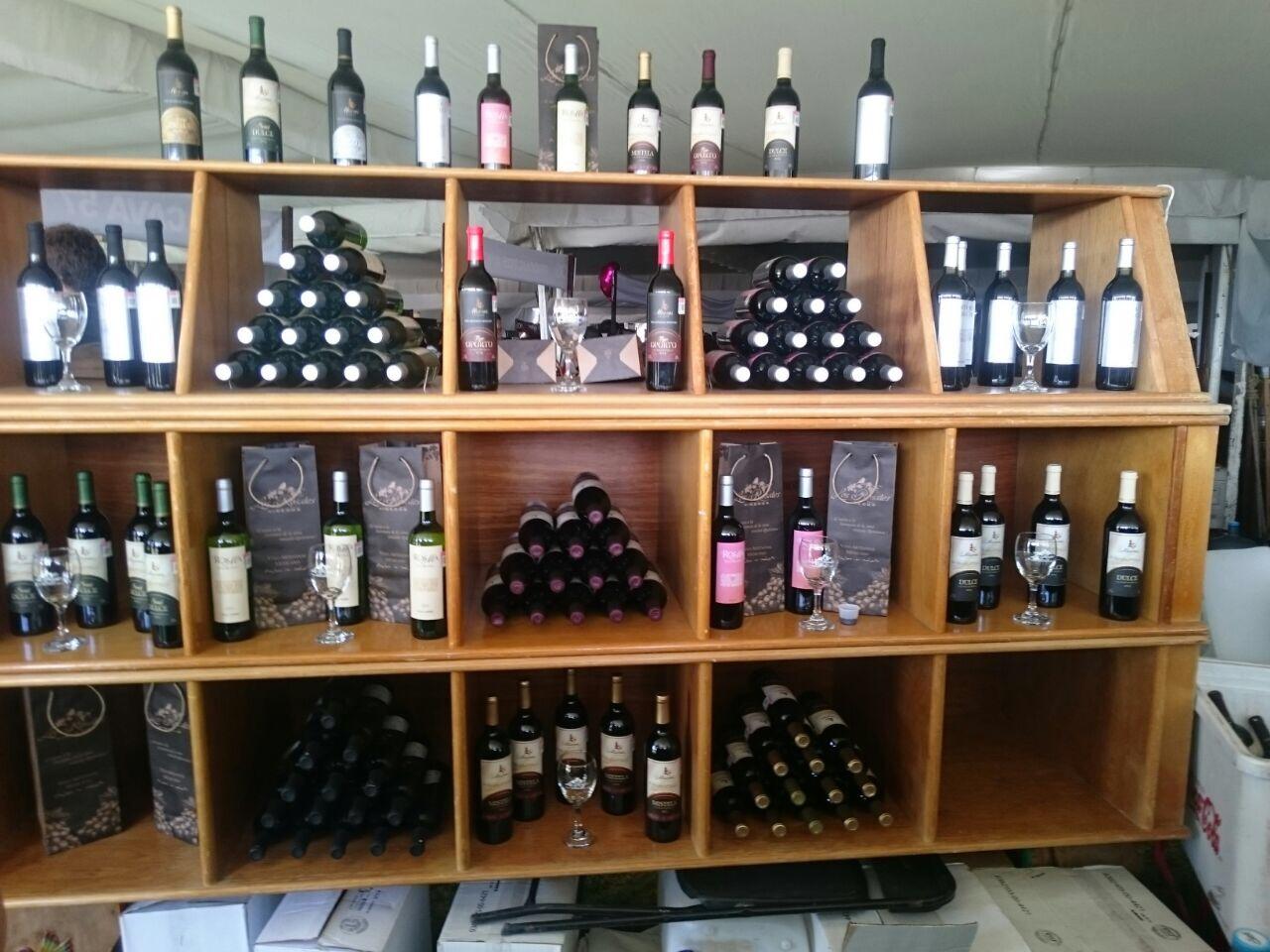 Festival 100 Vinos Mexicanos, orgullo vinícola