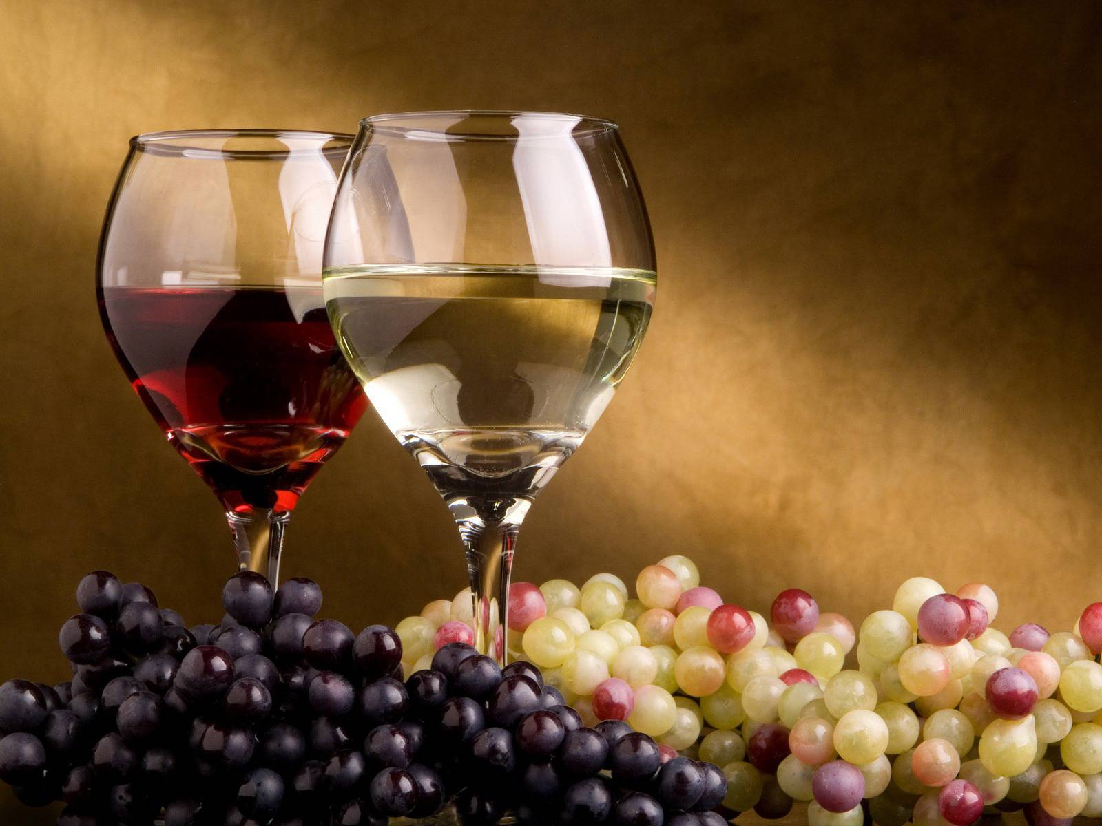 Tipos de copa para cada vino