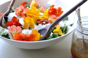 Colores de la tierra al plato: alimentos de primavera