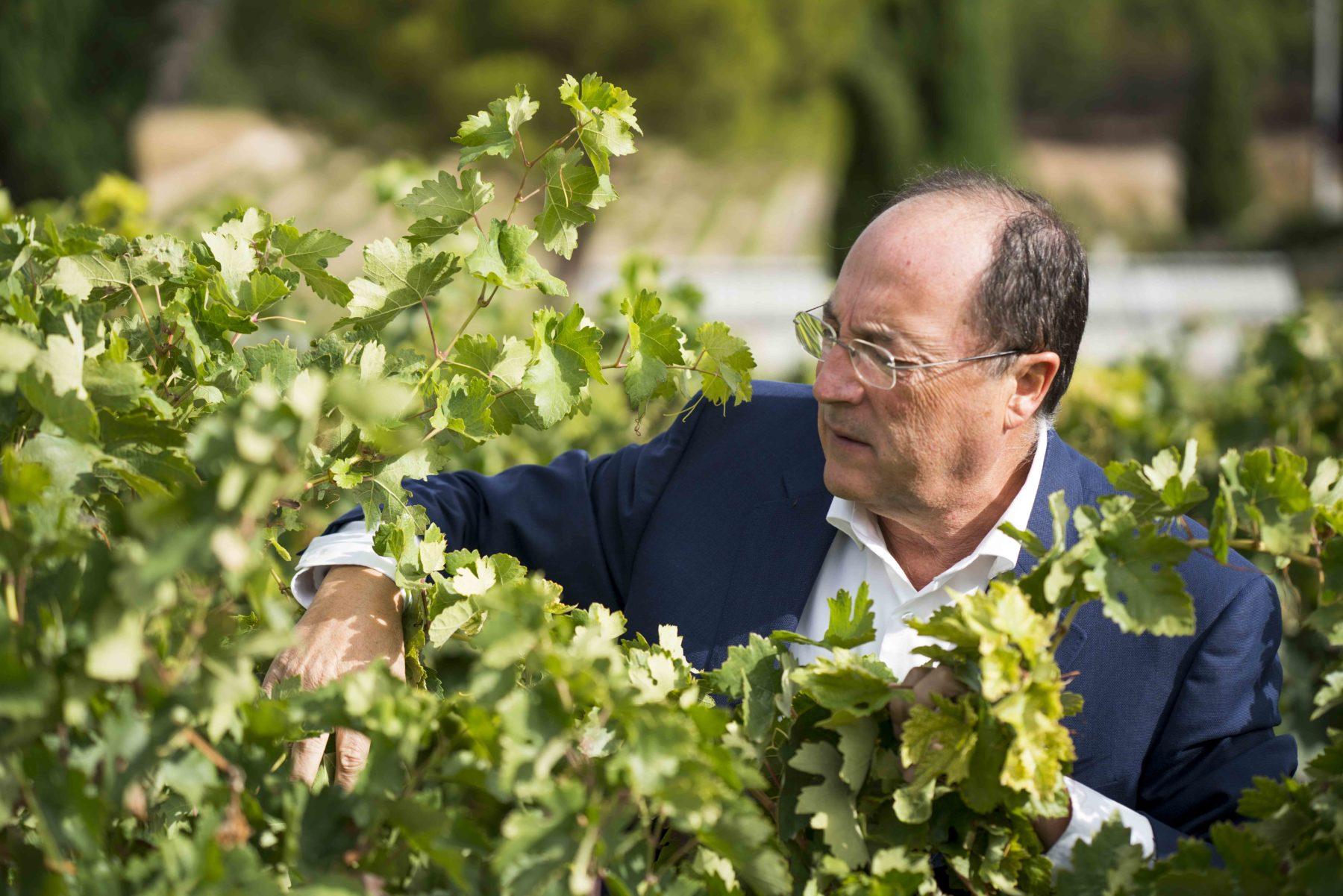 Carlos Moro presenta su vino de Rioja en México
