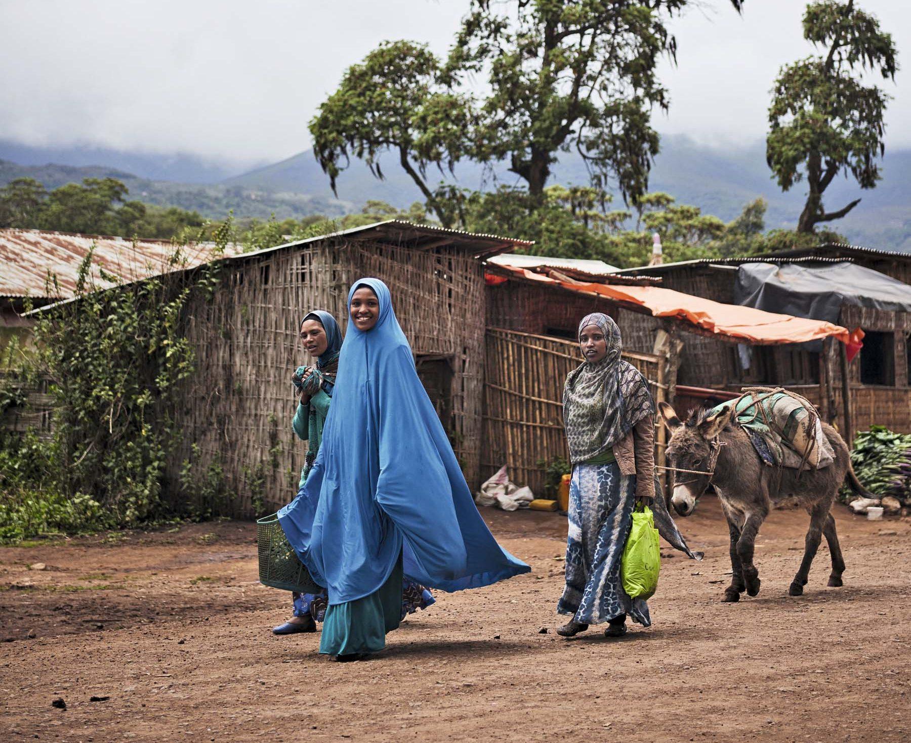 Etiopía: aromas de montaña