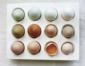 Huevo: protagonista de la cocina