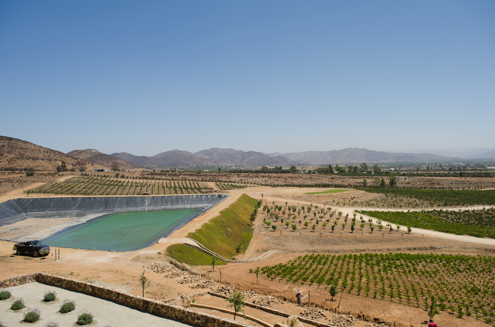 Valle Wine & Food Festival en Valle de Guadalupe