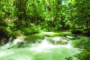 Jamaica: caudales de adrenalina