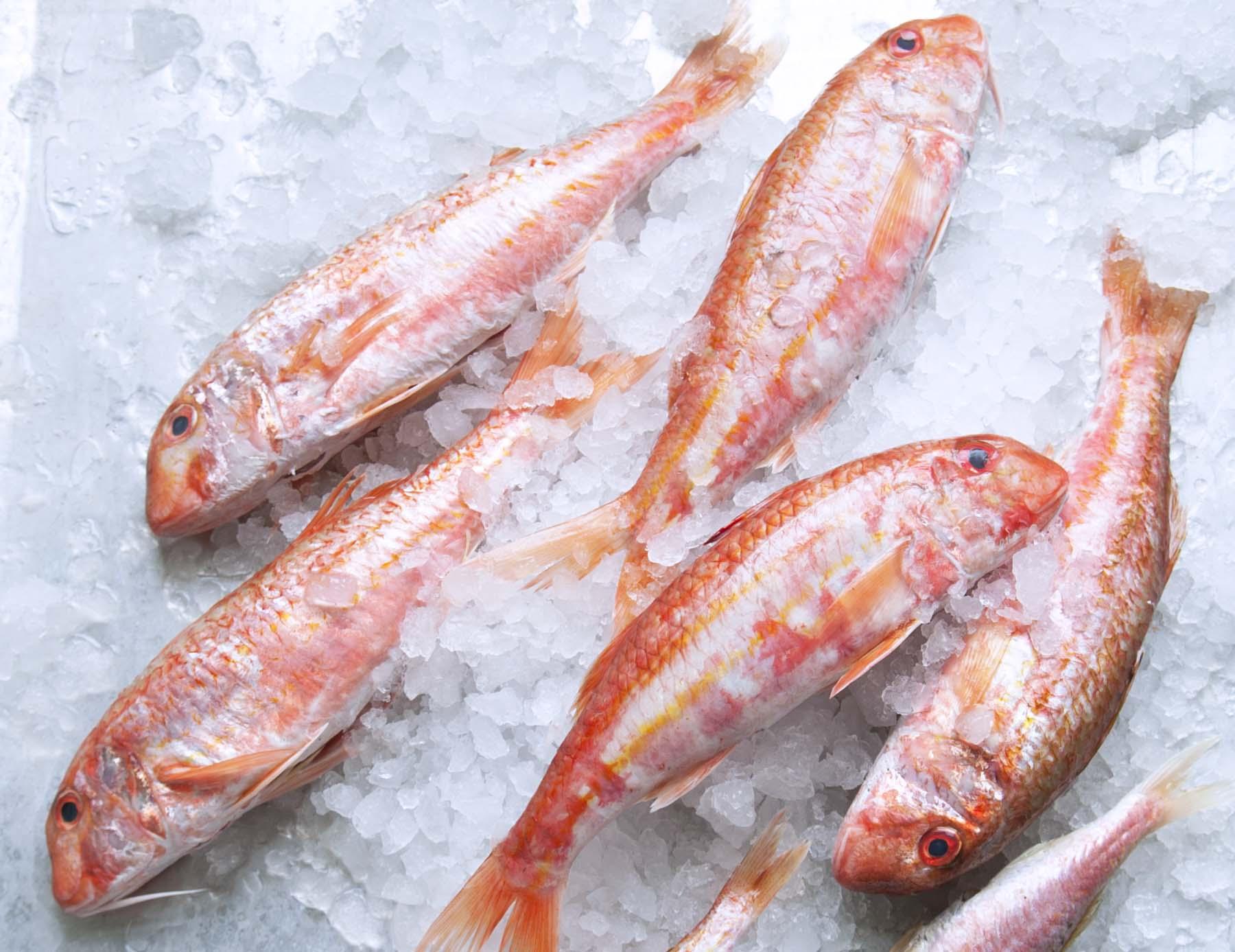 Salmonete, el sabor dulce del mar