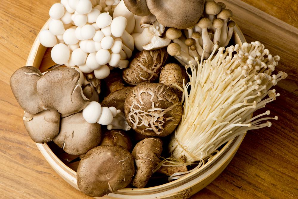 Hongos comestibles del mundo, misteriosos manjares