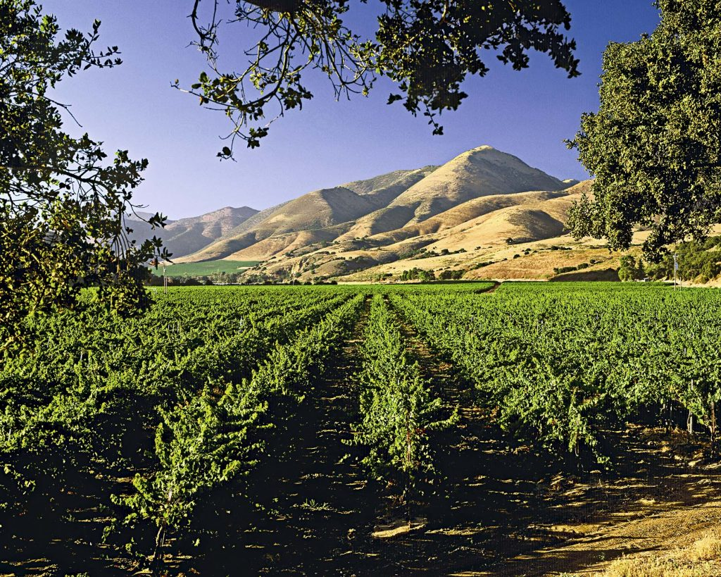 Santa Bárbara, destino de cálidos sabores