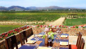 Presentan Polaris, nueva etiqueta de vinícola El Cielo