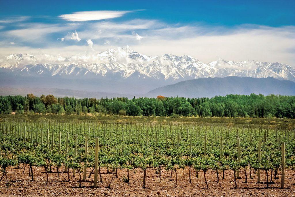 Mendoza: en las raíces de Los Andes