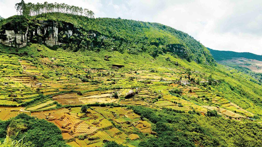 ¿Qué visitar en Trincomalee, Sri Lanka?