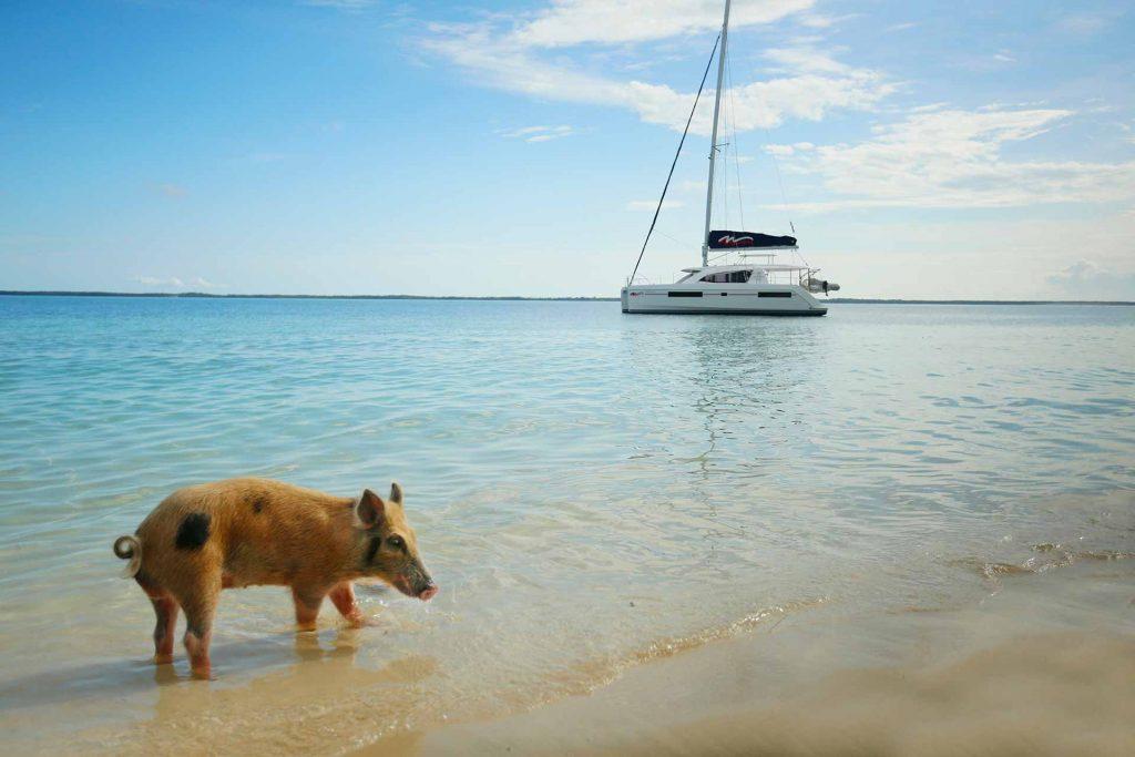 islas Ábaco