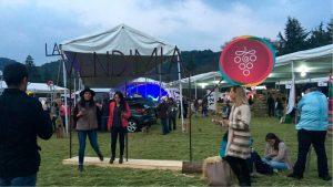 La Vendimia en Nuestra Tierra: celebrar la vid