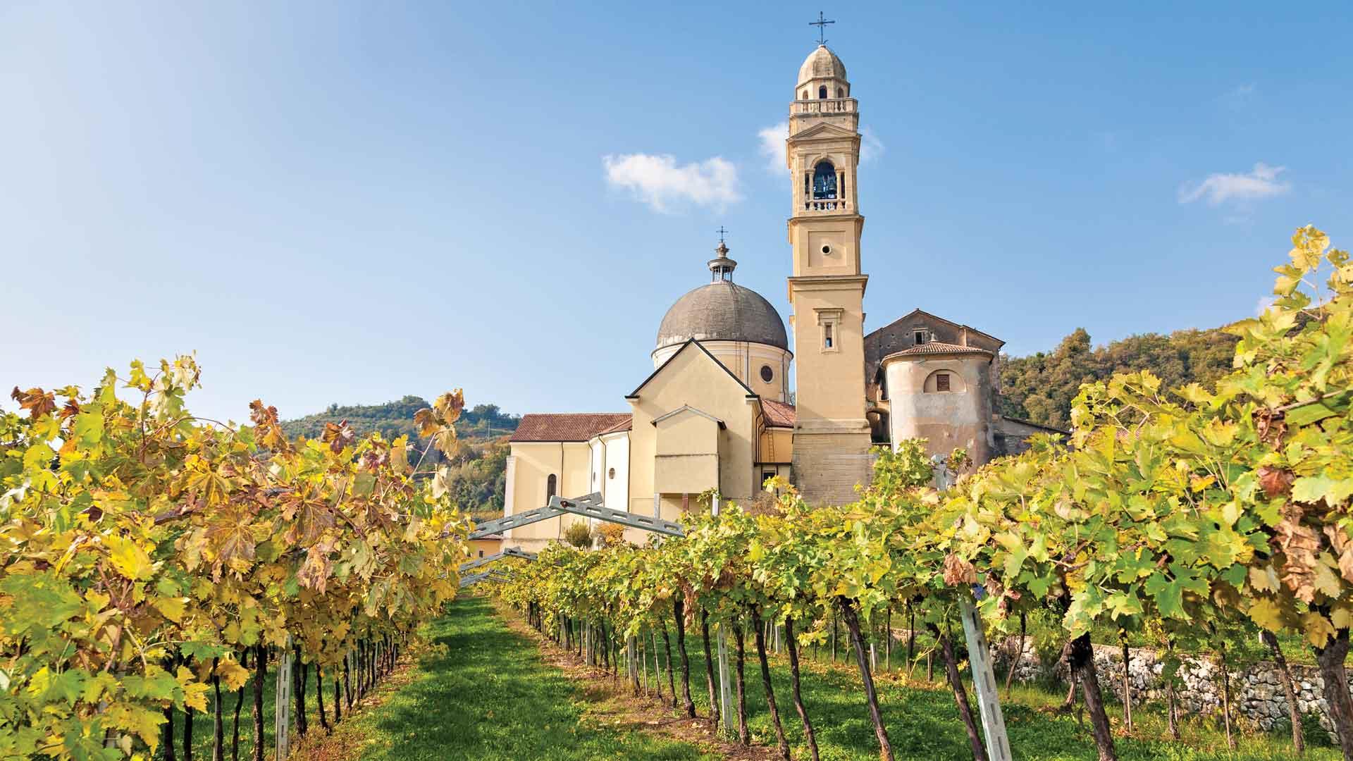 Valpolicella y Soave: a sorbos por el Véneto