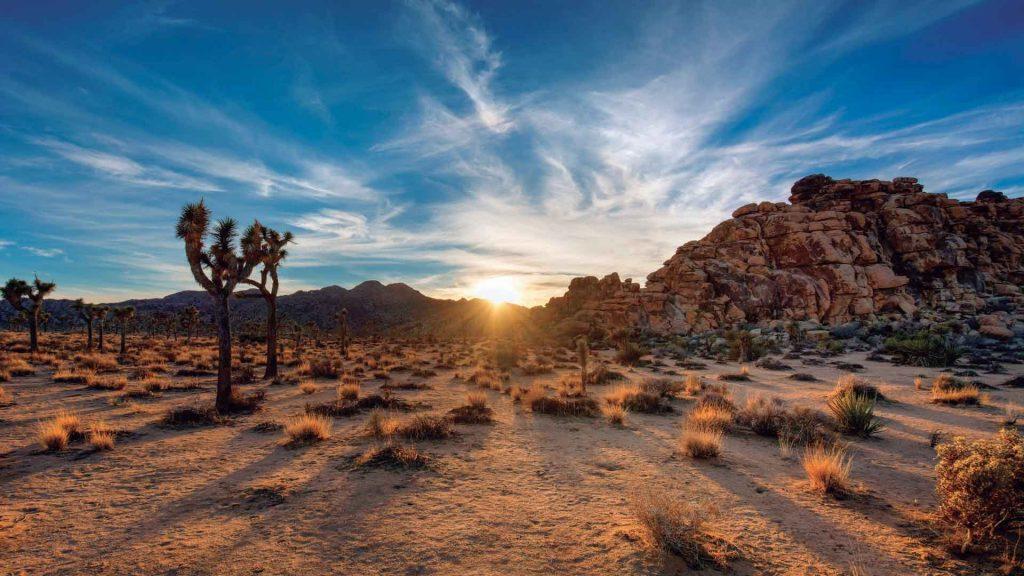 ¿Qué hacer en Palm Springs, California?