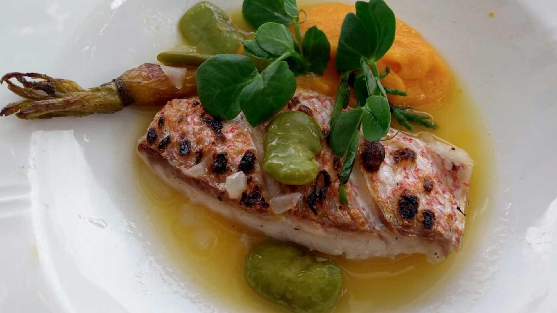 Deléitate con el nuevo menú de Cantina Palacio