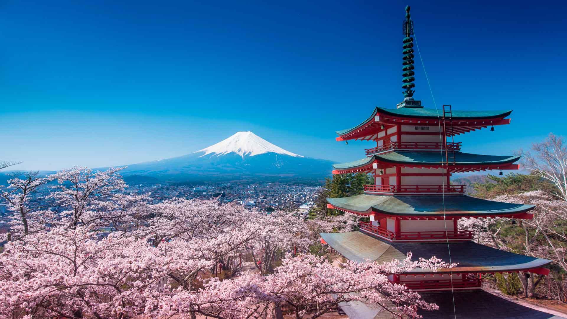 4 motivos para viajar a Japón