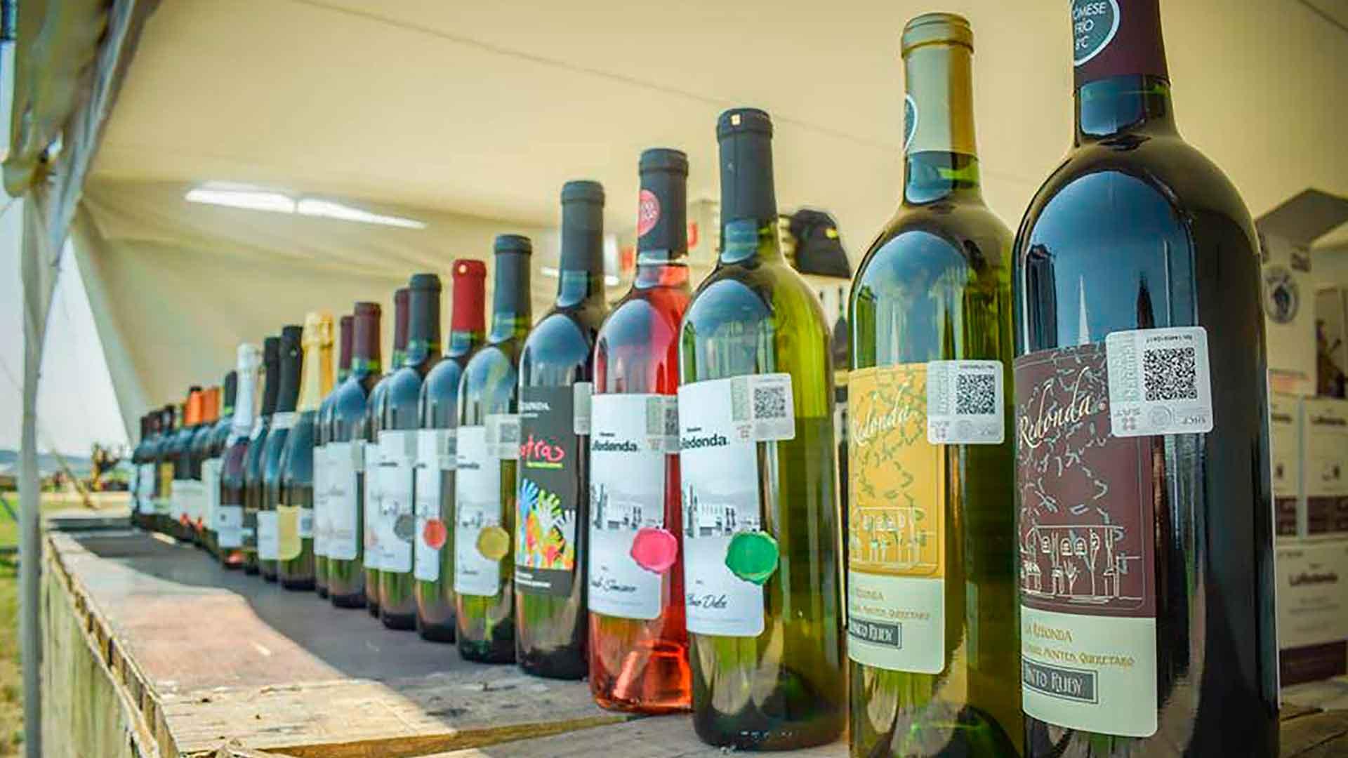 5 razones para asistir al Festival 100 Vinos Mexicanos