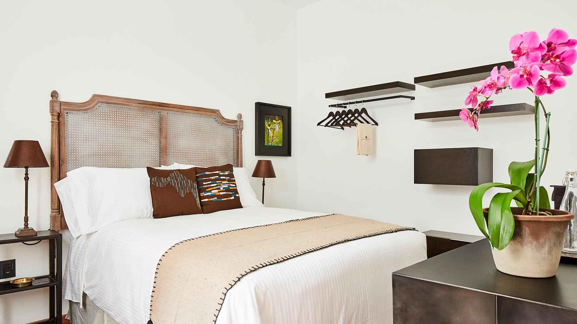 Conoce el hotel de orquídeas en Polanco