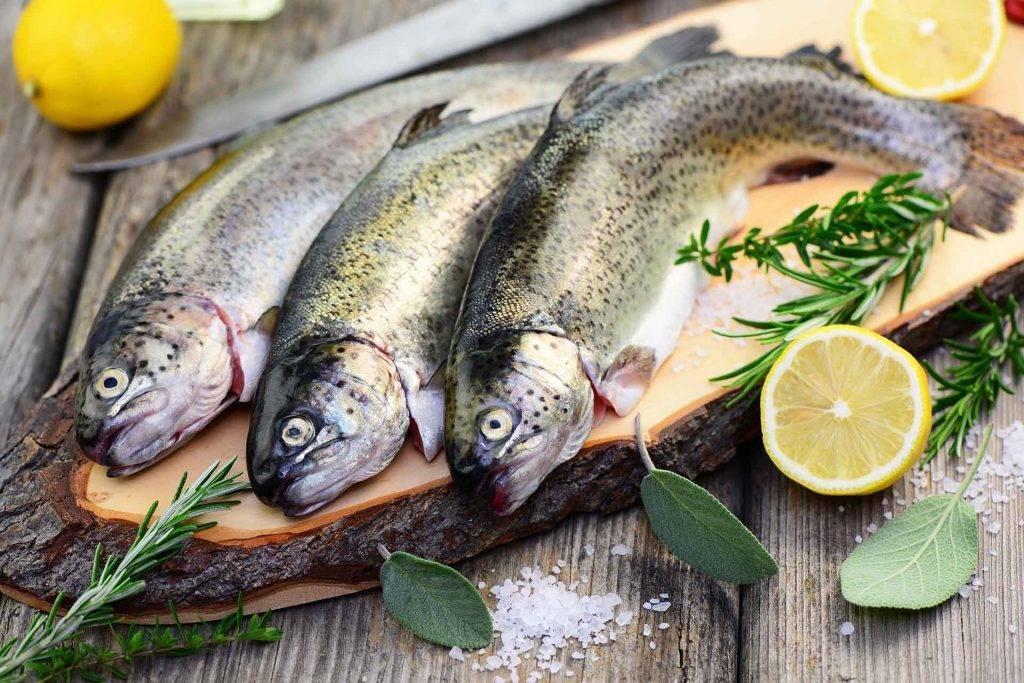 pescados sustentables cuaresma