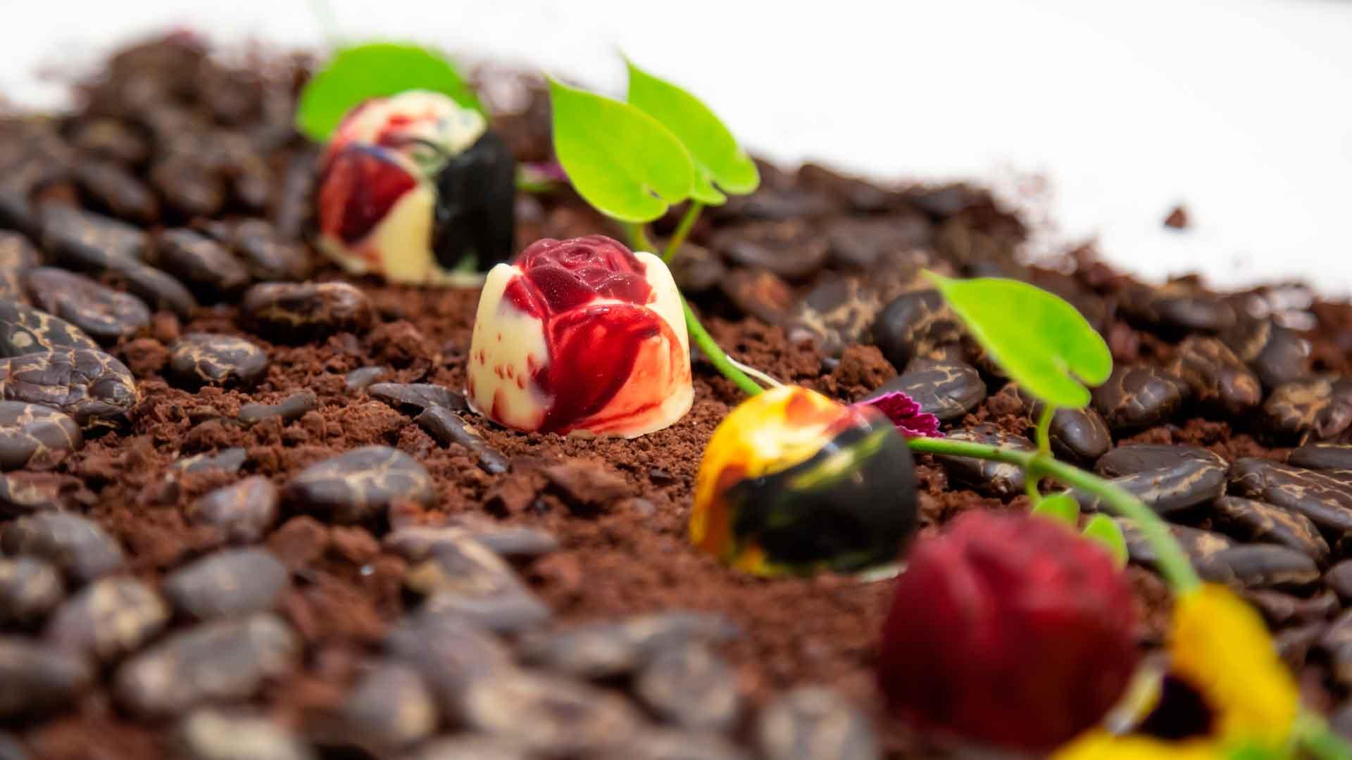 Los chocolates de Velas Resorts que tienes que probar