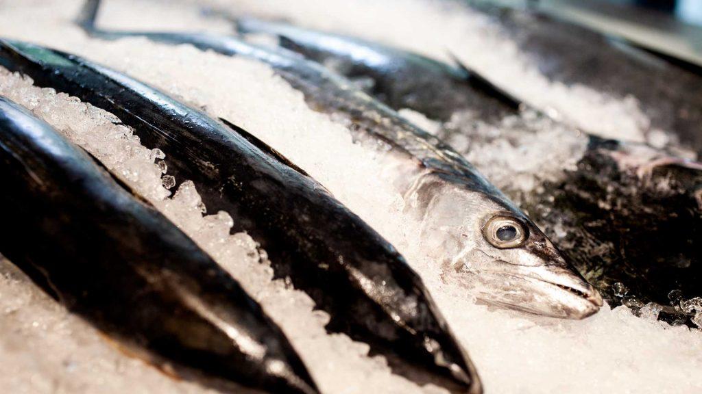 Pardo La Carne y La Pesca: el showroom de la proteína