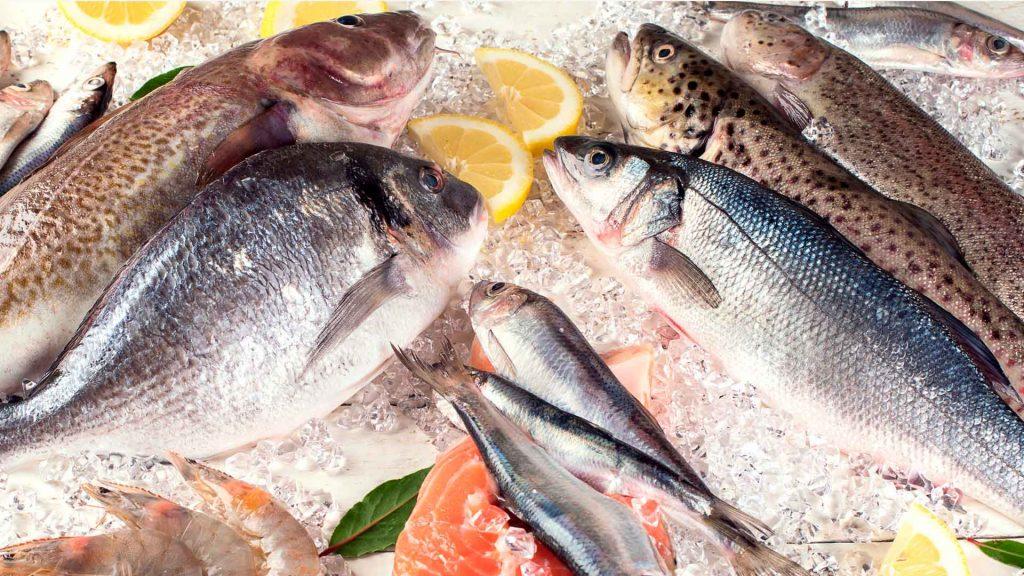 3 pescados sustentables para comer en cuaresma