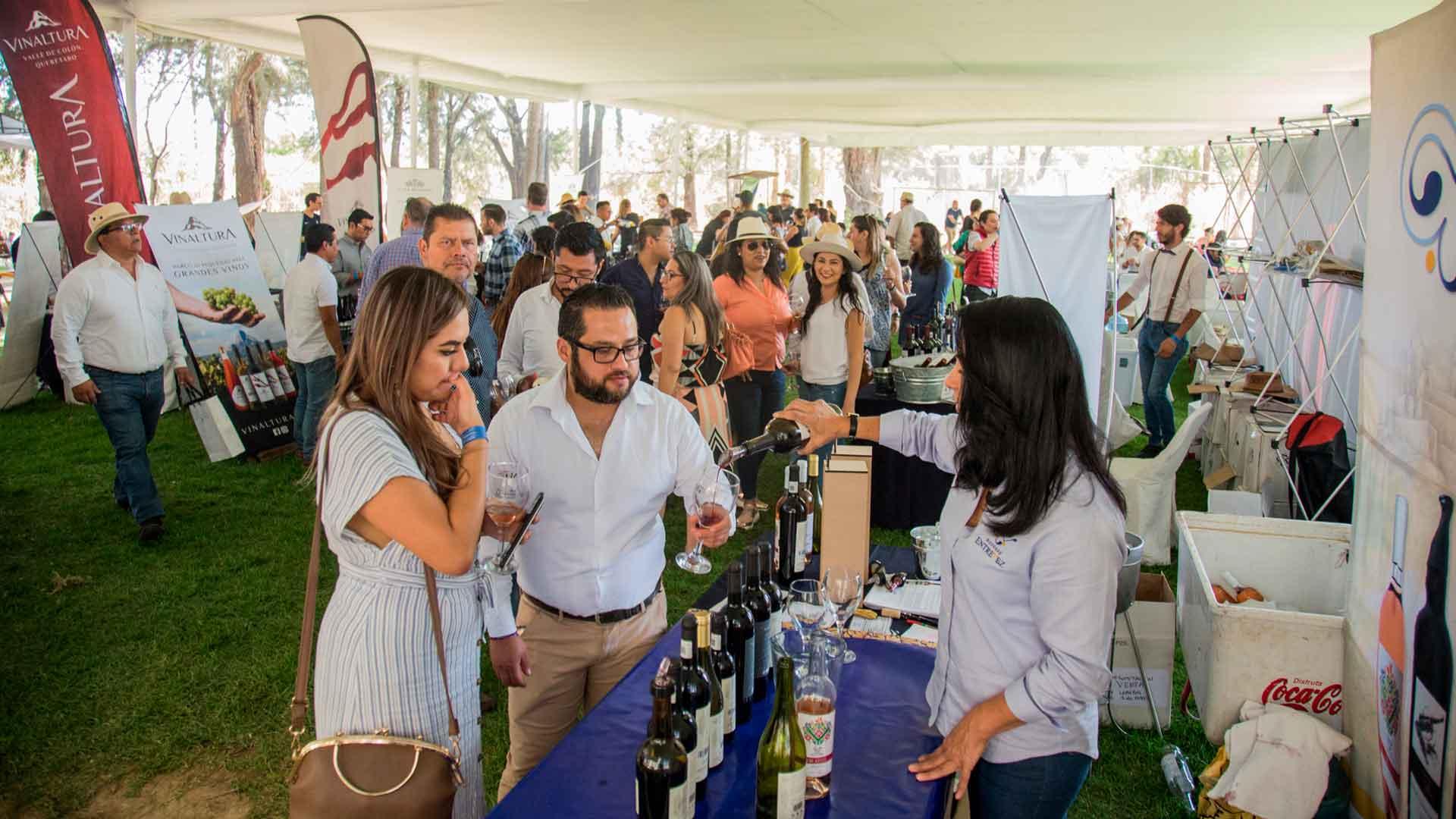 Maridando México: vinos, gastronomía y curiosidades