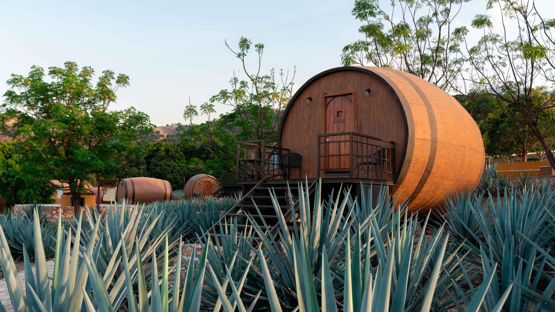 Matices Hotel de Barricas: dormir en camas de tequila