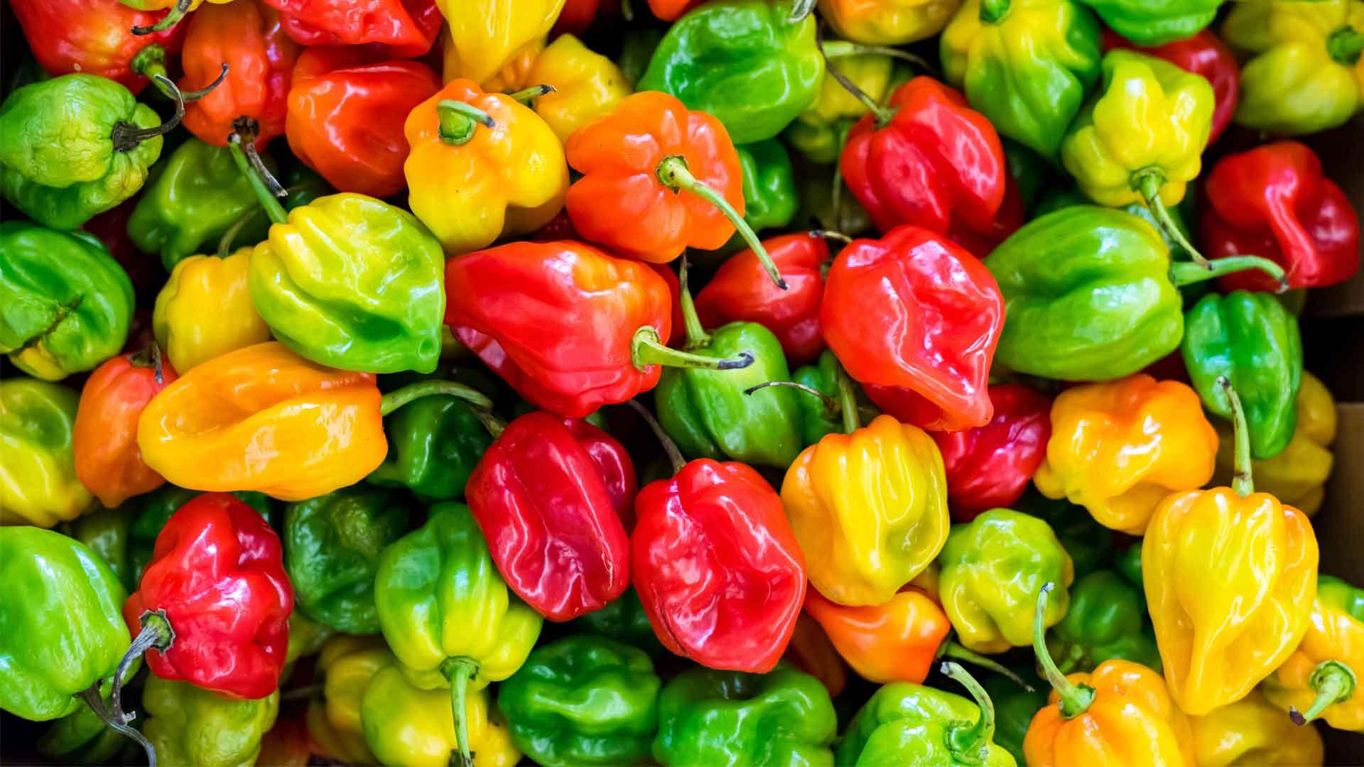 5 ingredientes extranjeros que adoptamos en México