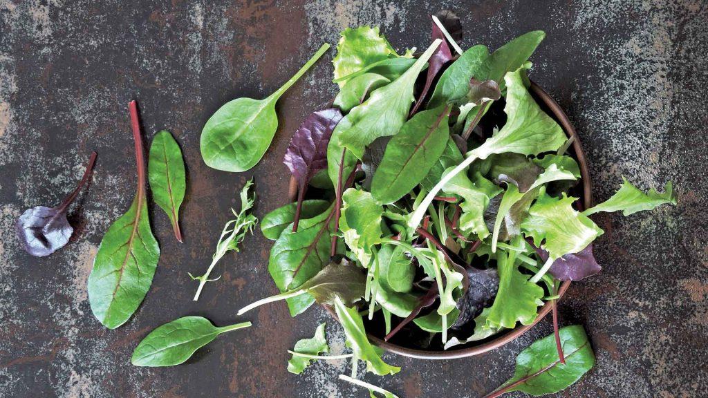 Recetas saludables con hojas verdes