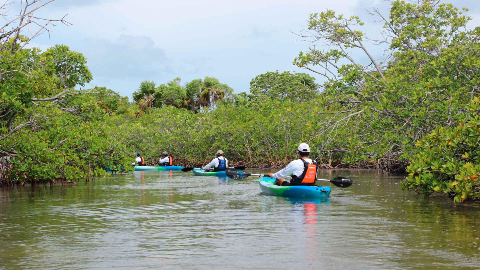 Tips viajeros para visitar destinos sustentables