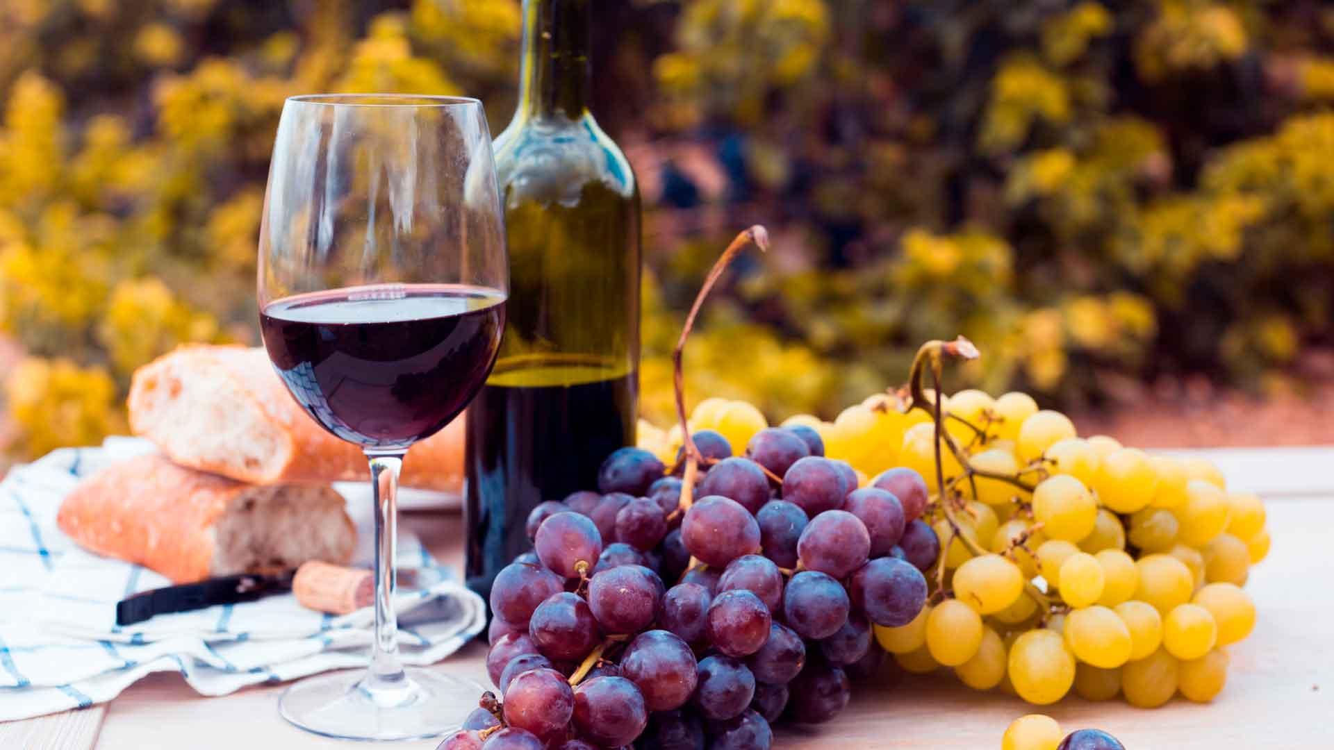 4 vinos argentinos imperdibles para brindar