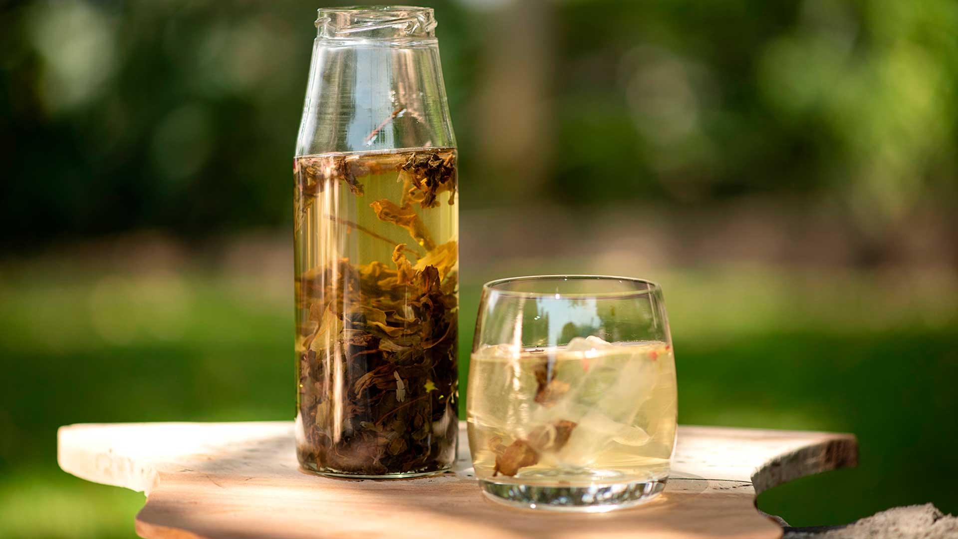 ¿Qué agua es mejor para el té?